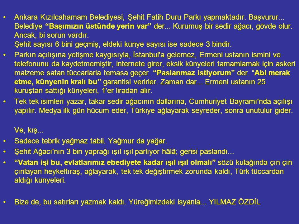 """•Ankara Kızılcahamam Belediyesi, Şehit Fatih Duru Parkı yapmaktadır. Başvurur... Belediye """"Başımızın üstünde yerin var"""" der... Kurumuş bir sedir ağacı"""