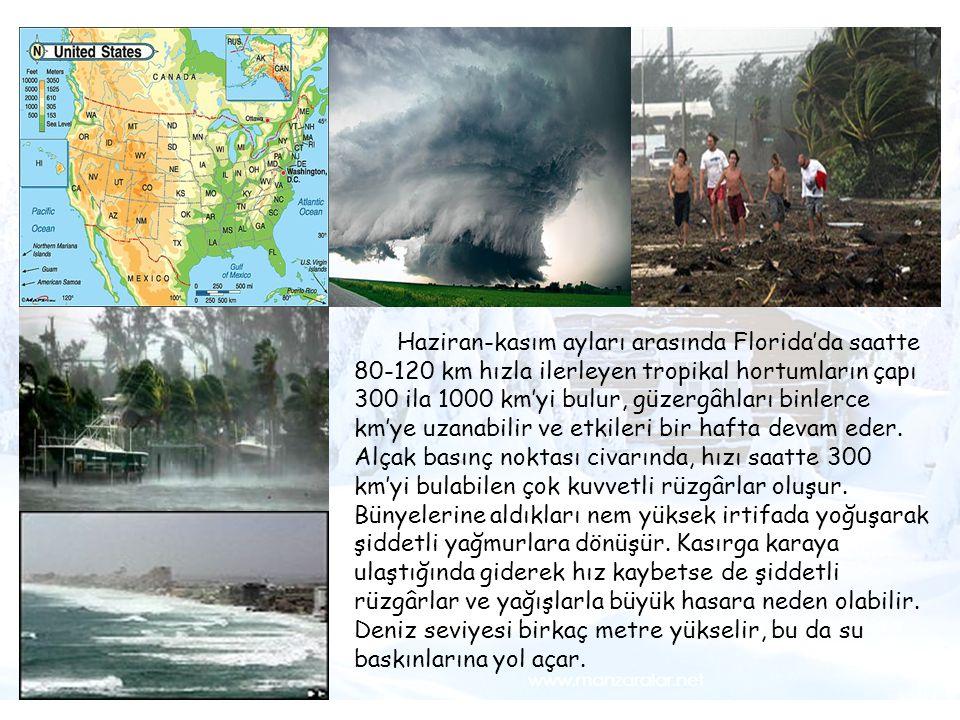Tsunami Haziran-kasım ayları arasında Florida'da saatte 80-120 km hızla ilerleyen tropikal hortumların çapı 300 ila 1000 km'yi bulur, güzergâhları bin