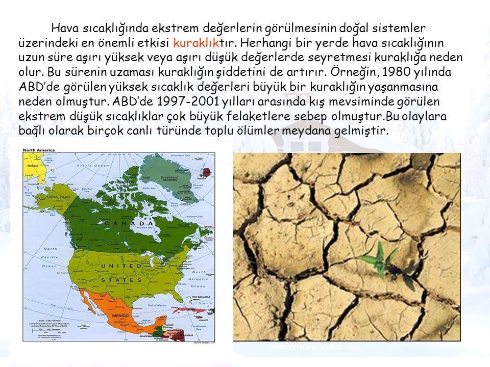 Tsunami Hava sıcaklığında ekstrem değerlerin görülmesinin doğal sistemler üzerindeki en önemli etkisi kuraklıktır. Herhangi bir yerde hava sıcaklığını