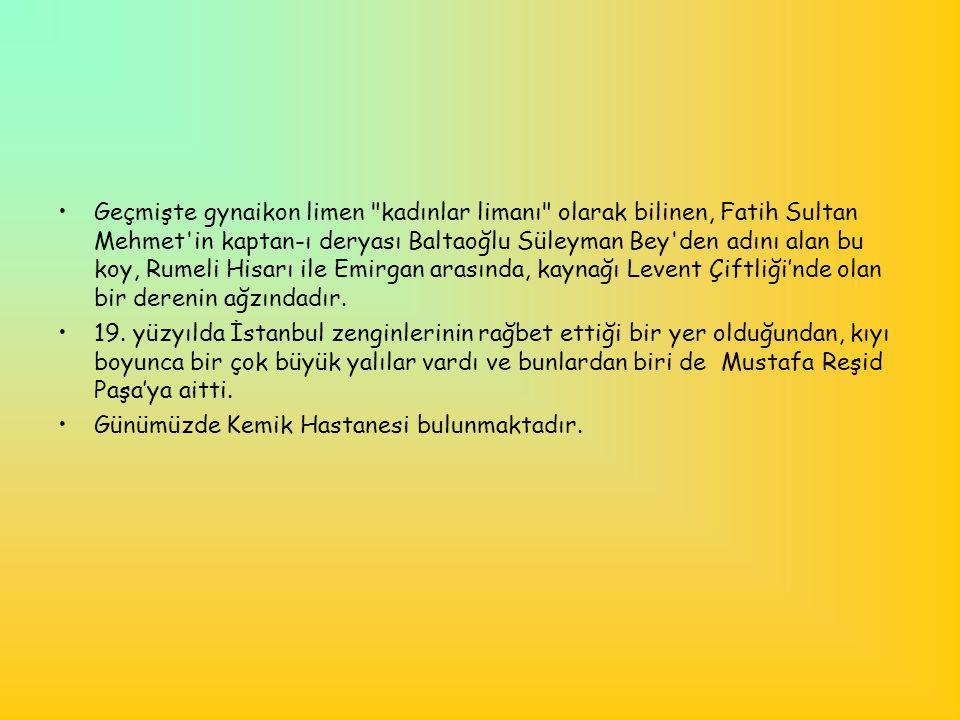 •Aslında bir tarım ülkesi olan Türkiye; buğdayı, unu, şekeri, soyayı, tütünü, ayçiçeğini, pamuğu, eti ithal eder duruma düştü.