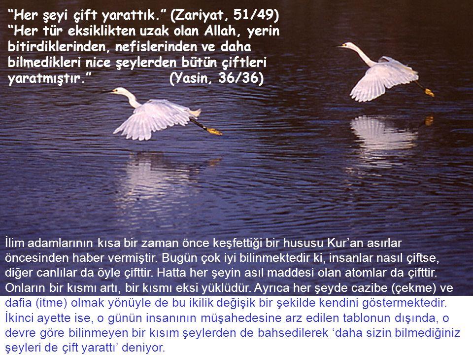 Her şeyi çift yarattık. (Zariyat, 51/49) Her tür eksiklikten uzak olan Allah, yerin bitirdiklerinden, nefislerinden ve daha bilmedikleri nice şeylerden bütün çiftleri yaratmıştır. (Yasin, 36/36) İlim adamlarının kısa bir zaman önce keşfettiği bir hususu Kur'an asırlar öncesinden haber vermiştir.