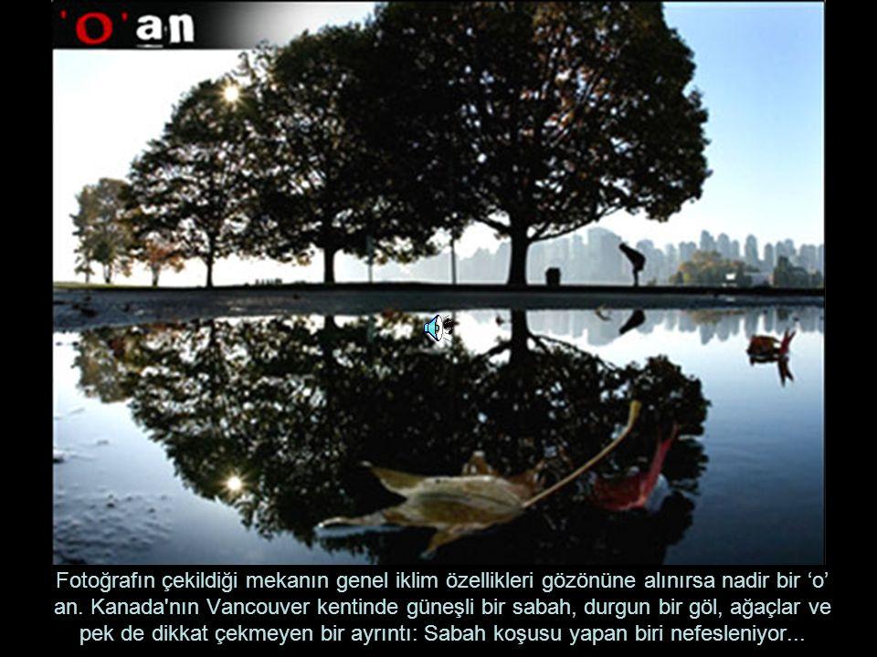 Fotoğrafın çekildiği mekanın genel iklim özellikleri gözönüne alınırsa nadir bir 'o' an. Kanada'nın Vancouver kentinde güneşli bir sabah, durgun bir g