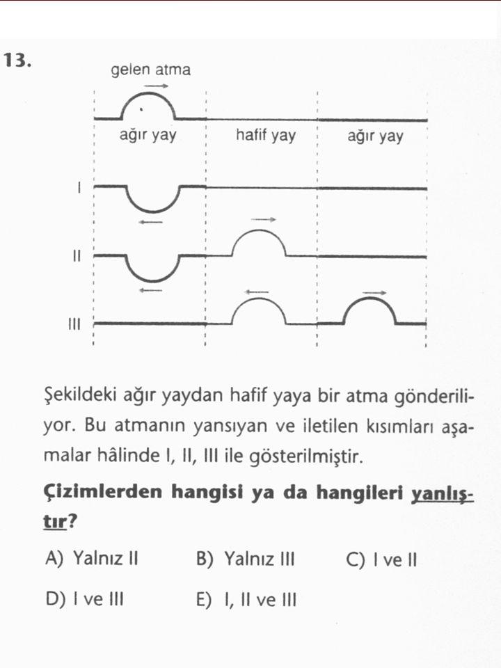 Yedi eksik  Prof. Dr. Selçuk, araştırmalar sonucunda eğitim sisteminde saptanan yedi eksiği de şöyle sıraladı:  1- Problem çözme becerisi, 2- Eleşti