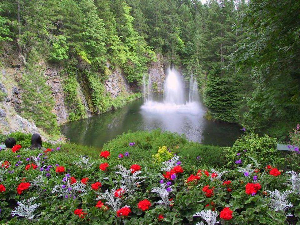 If I gave you this beautiful scenery, Eğer size bu güzel manzaraları,