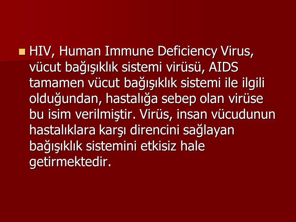  HIV, Human Immune Deficiency Virus, vücut bağışıklık sistemi virüsü, AIDS tamamen vücut bağışıklık sistemi ile ilgili olduğundan, hastalığa sebep ol