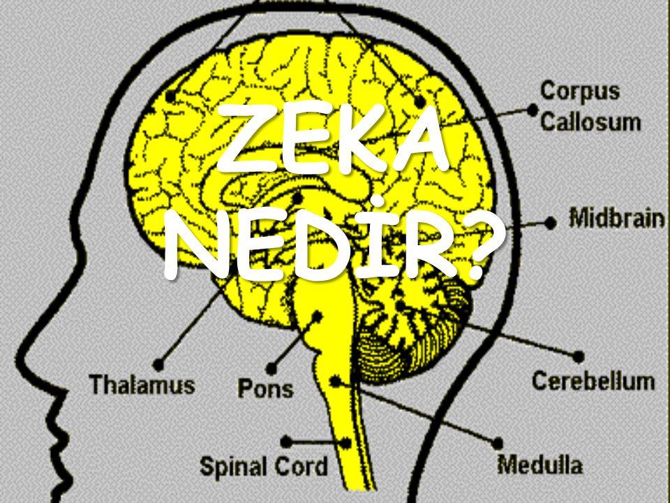 Zeka insan beyninin karmaşık bir yeteneğidir.Daha doğru bir deyimle,zihnin bir çok yeteneğinin uyumlu çalışması sonucu ortaya çıkan bir yetenekler bileşimidir.
