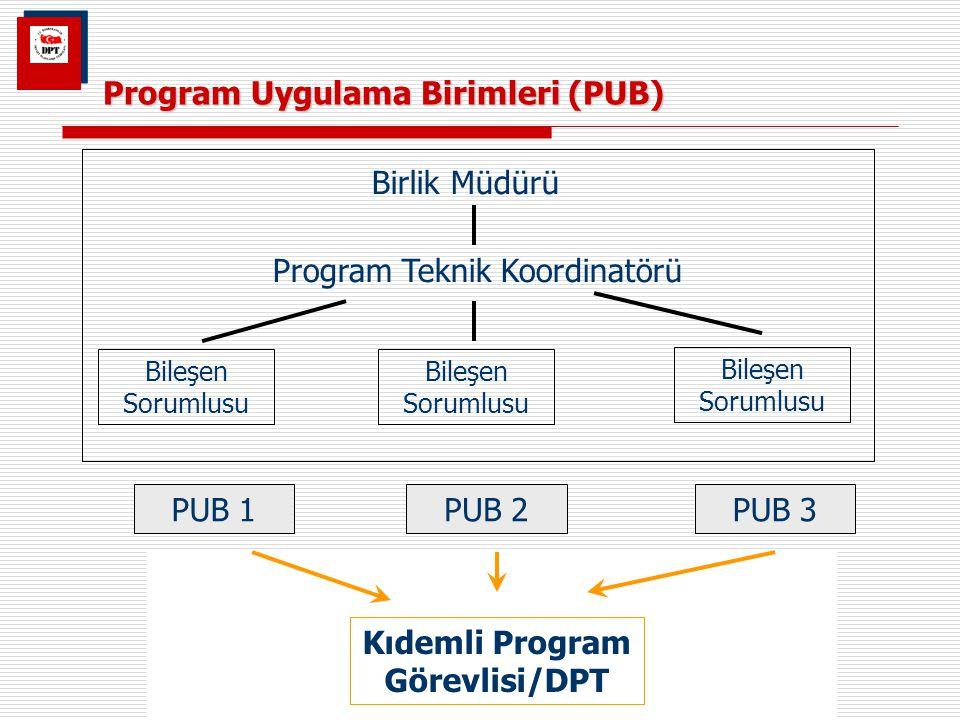Program Uygulama Birimleri (PUB) Birlik Müdürü Program Teknik Koordinatörü Bileşen Sorumlusu PUB 1PUB 3PUB 2 Kıdemli Program Görevlisi/DPT