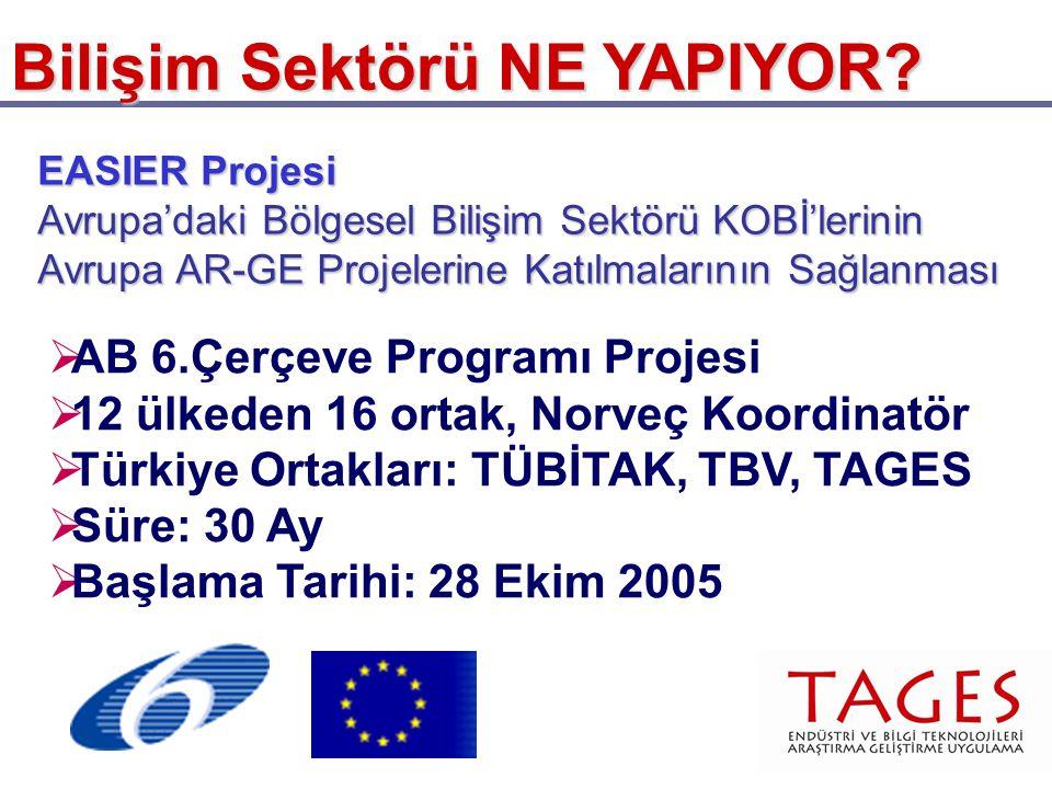 Bilişim Sektörü NE YAPIYOR? EASIER Projesi Avrupa'daki Bölgesel Bilişim Sektörü KOBİ'lerinin Avrupa AR-GE Projelerine Katılmalarının Sağlanması  AB 6