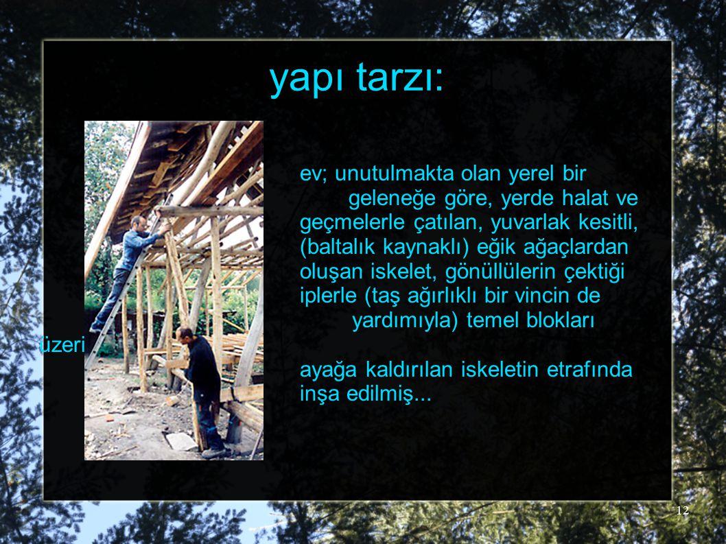 12 yapı tarzı: ev; unutulmakta olan yerel bir geleneğe göre, yerde halat ve geçmelerle çatılan, yuvarlak kesitli, (baltalık kaynaklı) eğik ağaçlardan