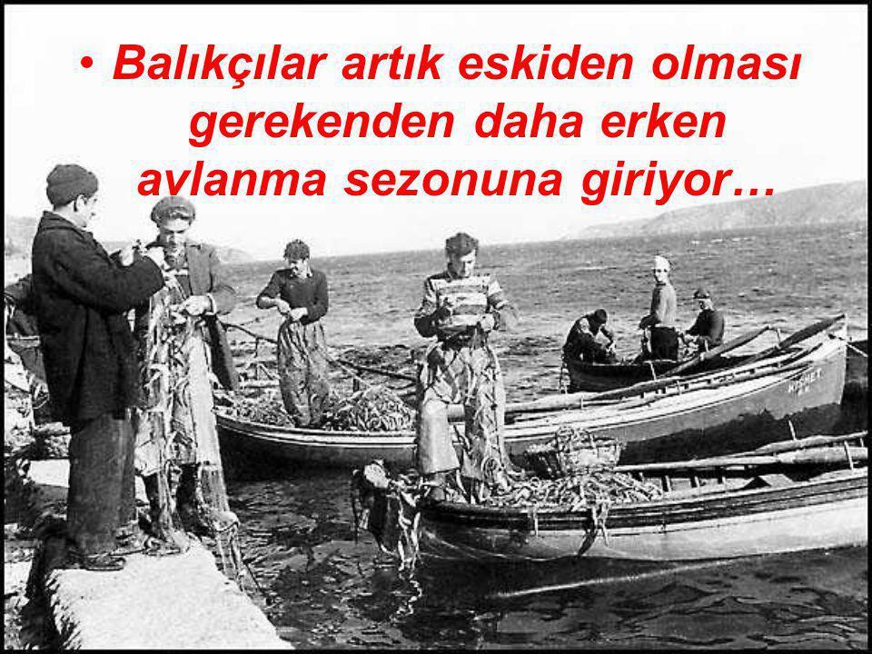 . •B•Balıkçılar artık eskiden olması gerekenden daha erken avlanma sezonuna giriyor…