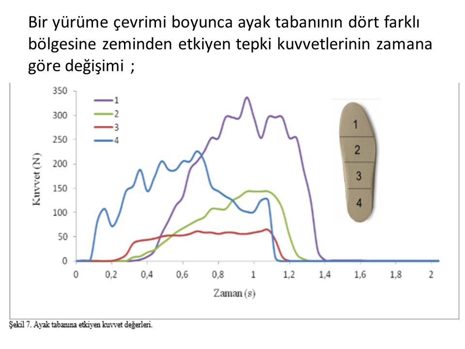 Bir yürüme çevrimi boyunca ayak tabanının dört farklı bölgesine zeminden etkiyen tepki kuvvetlerinin zamana göre değişimi ;
