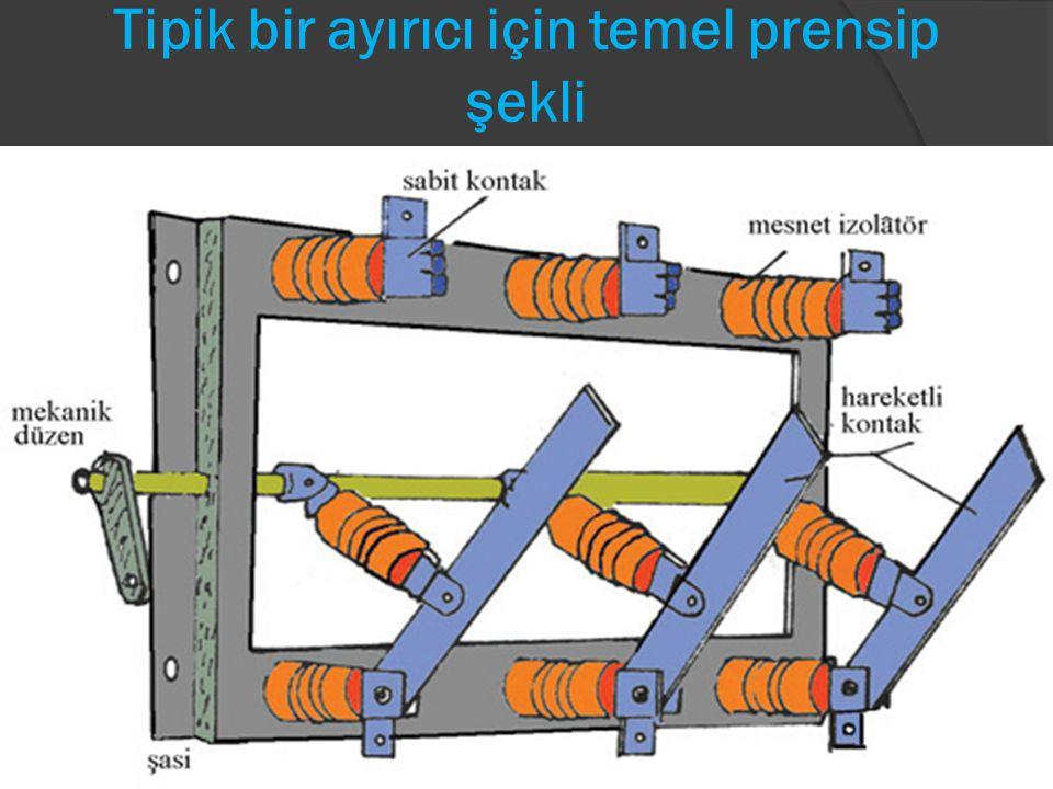 KESİCİLER