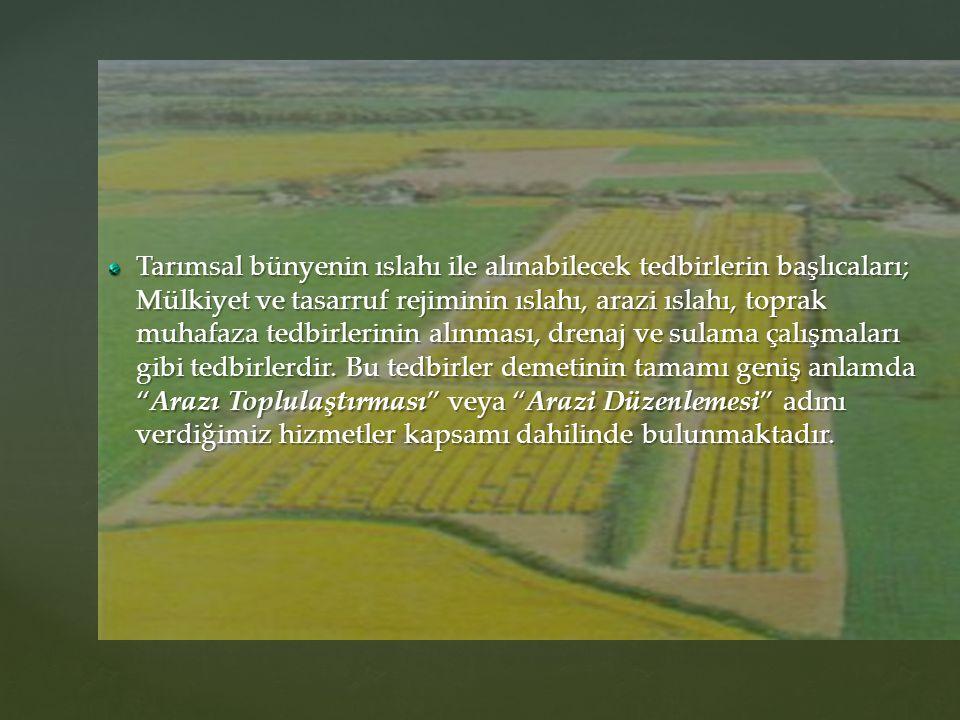 Tarımsal bünyenin ıslahı ile alınabilecek tedbirlerin başlıcaları; Mülkiyet ve tasarruf rejiminin ıslahı, arazi ıslahı, toprak muhafaza tedbirlerinin