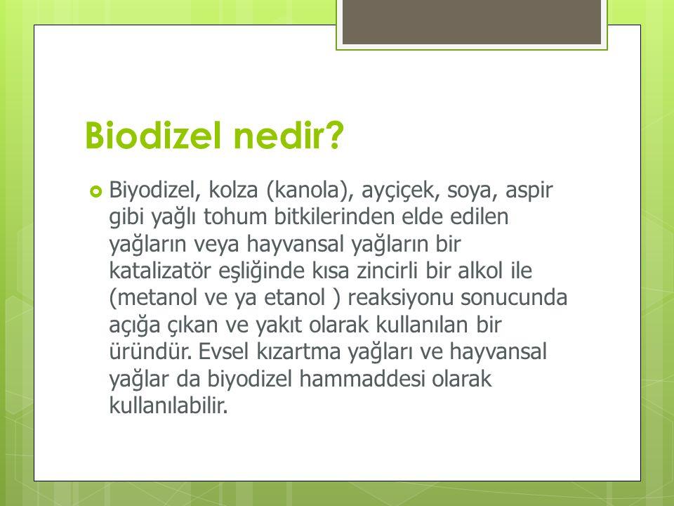 Biodizel nedir?  Biyodizel, kolza (kanola), ayçiçek, soya, aspir gibi yağlı tohum bitkilerinden elde edilen yağların veya hayvansal yağların bir kata