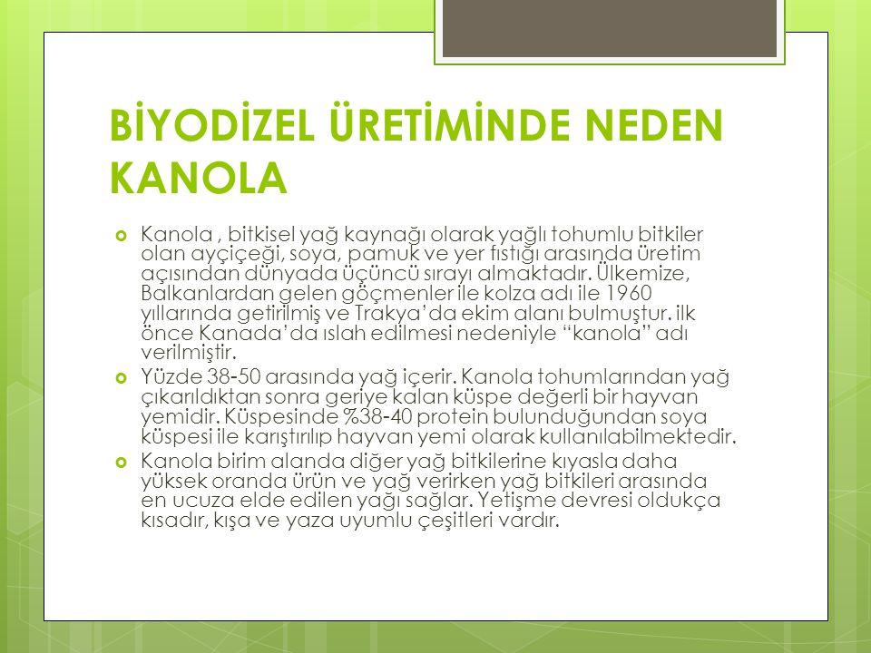 Biyodizel Sınıflandırılması:  Biyodizel Dünyada ve ülkemizde motorindeki yağ oranı ile tanımlanır.