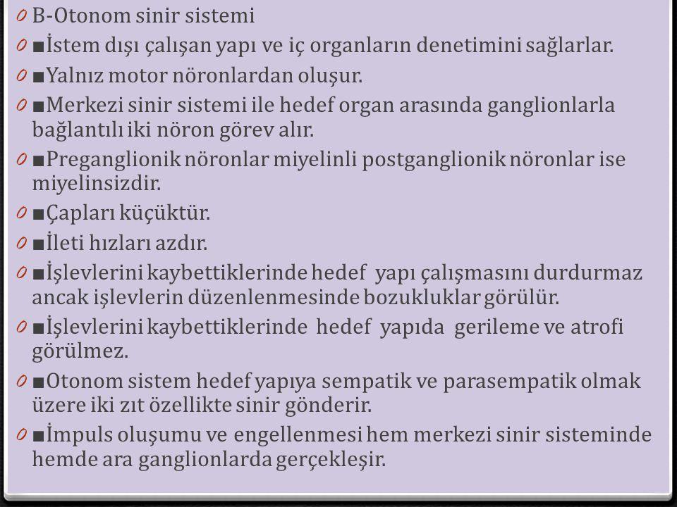 0 B-Otonom sinir sistemi 0 ■ İstem dışı çalışan yapı ve iç organların denetimini sağlarlar. 0 ■ Yalnız motor nöronlardan oluşur. 0 ■ Merkezi sinir sis