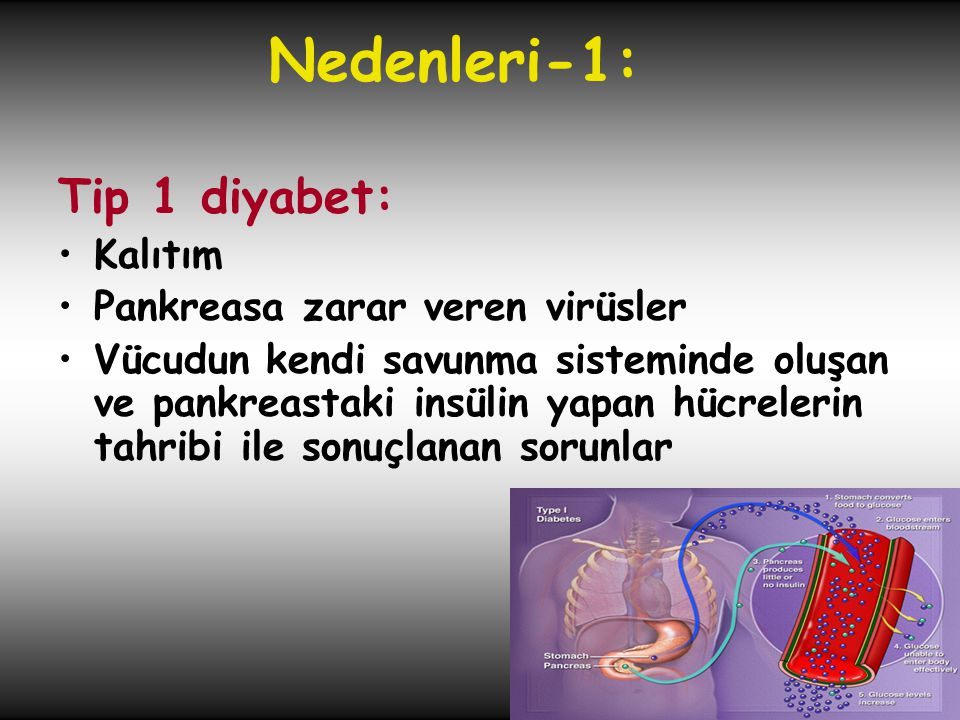 Tip 1 diyabet: •Kalıtım •Pankreasa zarar veren virüsler •Vücudun kendi savunma sisteminde oluşan ve pankreastaki insülin yapan hücrelerin tahribi ile