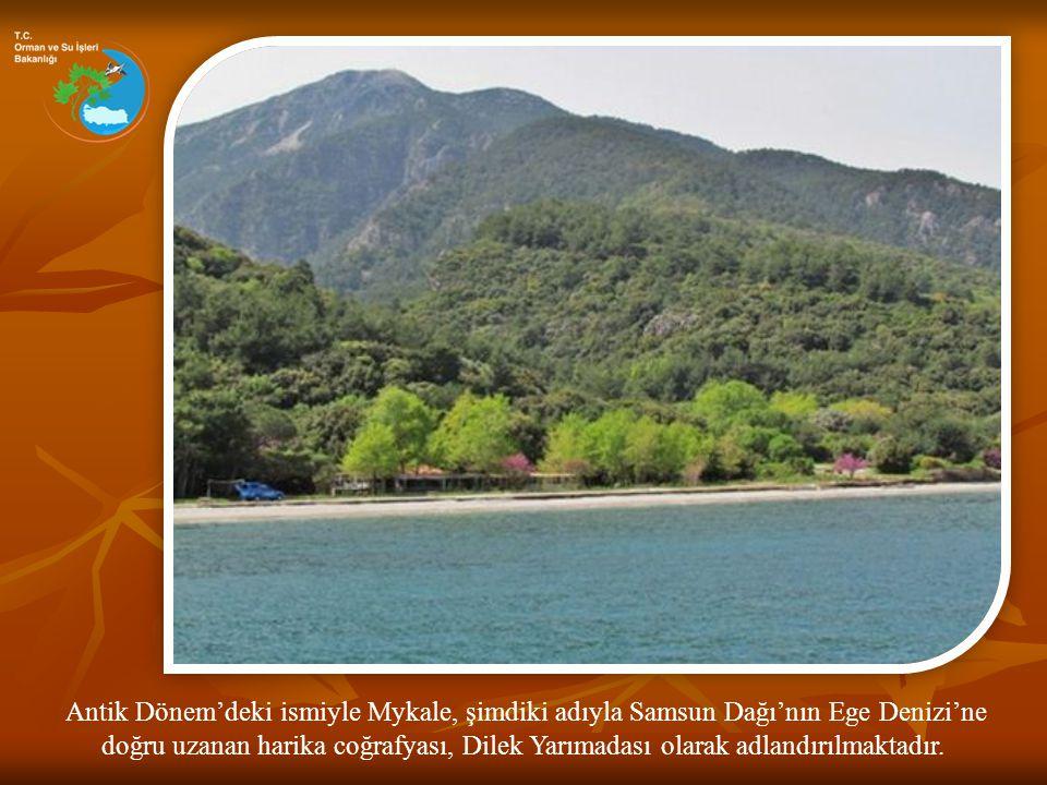 Antik Dönem'deki ismiyle Mykale, şimdiki adıyla Samsun Dağı'nın Ege Denizi'ne doğru uzanan harika coğrafyası, Dilek Yarımadası olarak adlandırılmaktad