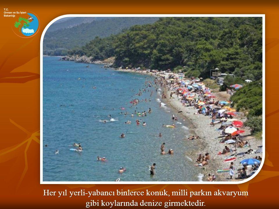 Her yıl yerli-yabancı binlerce konuk, milli parkın akvaryum gibi koylarında denize girmektedir.