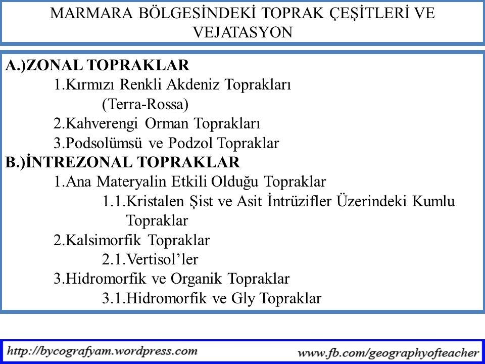 MARMARA BÖLGESİNDEKİ TOPRAK ÇEŞİTLERİ VE VEJATASYON A.)ZONAL TOPRAKLAR 1.Kırmızı Renkli Akdeniz Toprakları (Terra-Rossa) 2.Kahverengi Orman Toprakları 3.Podsolümsü ve Podzol Topraklar B.)İNTREZONAL TOPRAKLAR 1.Ana Materyalin Etkili Olduğu Topraklar 1.1.Kristalen Şist ve Asit İntrüzifler Üzerindeki Kumlu Topraklar 2.Kalsimorfik Topraklar 2.1.Vertisol'ler 3.Hidromorfik ve Organik Topraklar 3.1.Hidromorfik ve Gly Topraklar