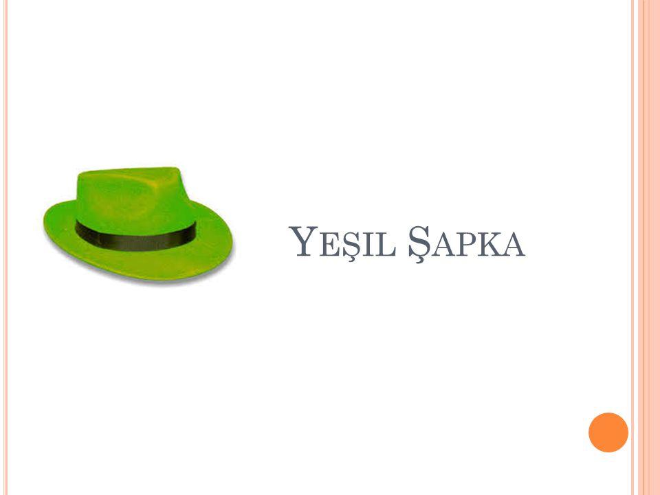 Y EŞIL Ş APKA