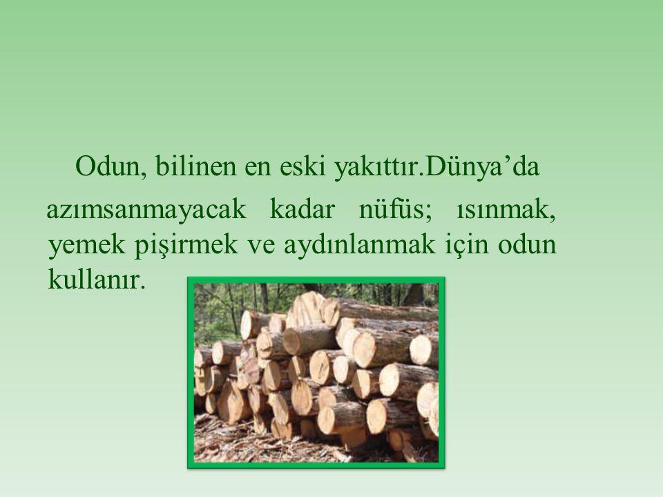 Odun, bilinen en eski yakıttır.Dünya'da azımsanmayacak kadar nüfüs; ısınmak, yemek pişirmek ve aydınlanmak için odun kullanır.