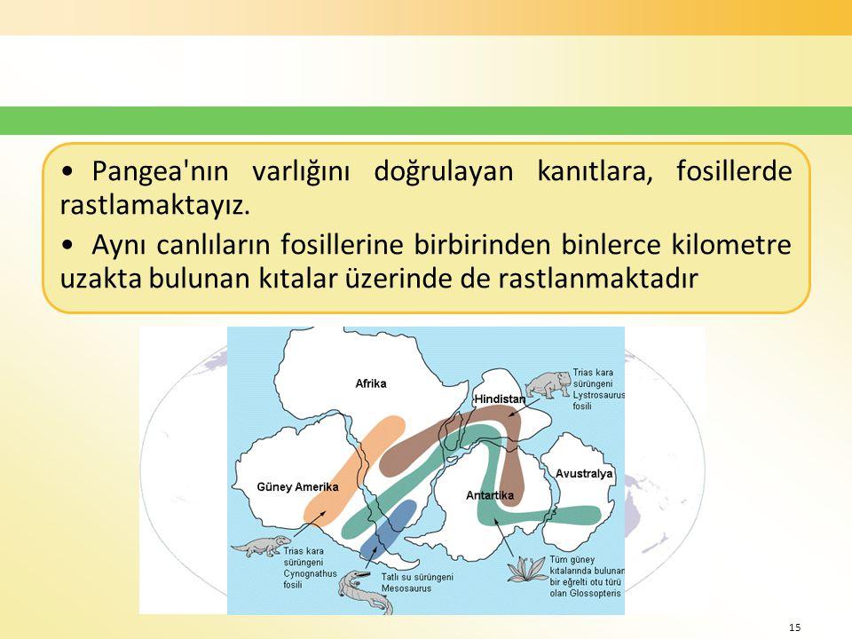 •Pangea nın varlığını doğrulayan kanıtlara, fosillerde rastlamaktayız.