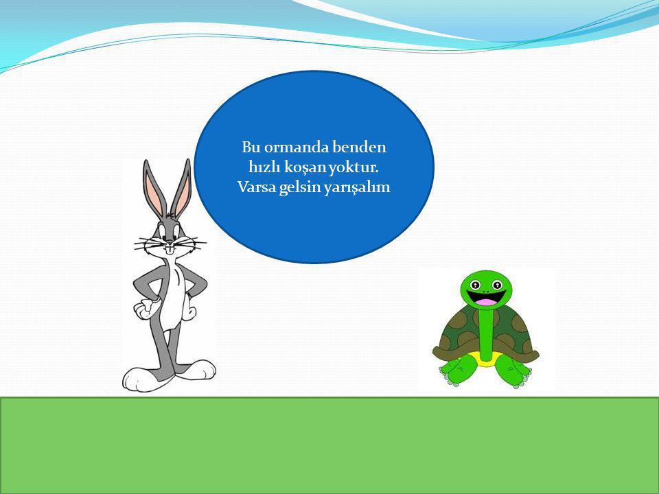Haklısın kaplumbağa, ben seni fazla hafife aldım, seni yenebilecekken kendi kibrime yenildim, tebrik ederim seni.