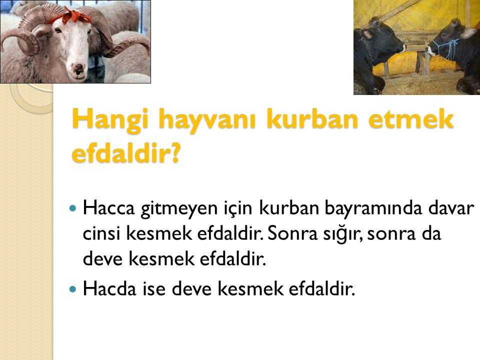 Hangi hayvanı kurban etmek efdaldir?  Hacca gitmeyen için kurban bayramında davar cinsi kesmek efdaldir. Sonra sı ğ ır, sonra da deve kesmek efdaldir