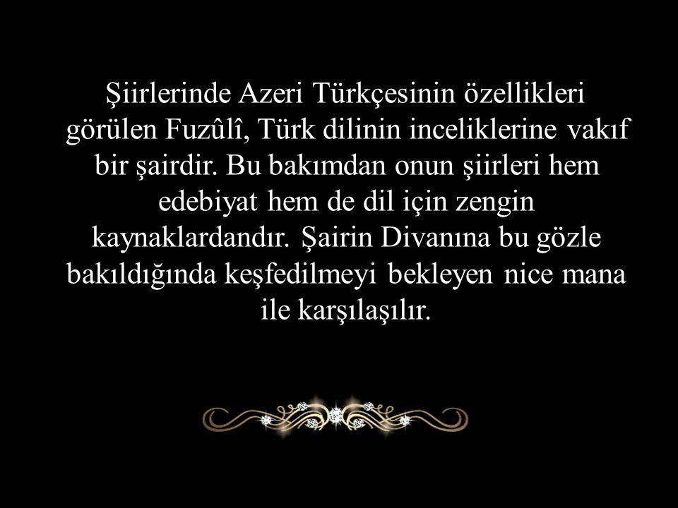 Şiirlerinde Azeri Türkçesinin özellikleri görülen Fuzûlî, Türk dilinin inceliklerine vakıf bir şairdir. Bu bakımdan onun şiirleri hem edebiyat hem de