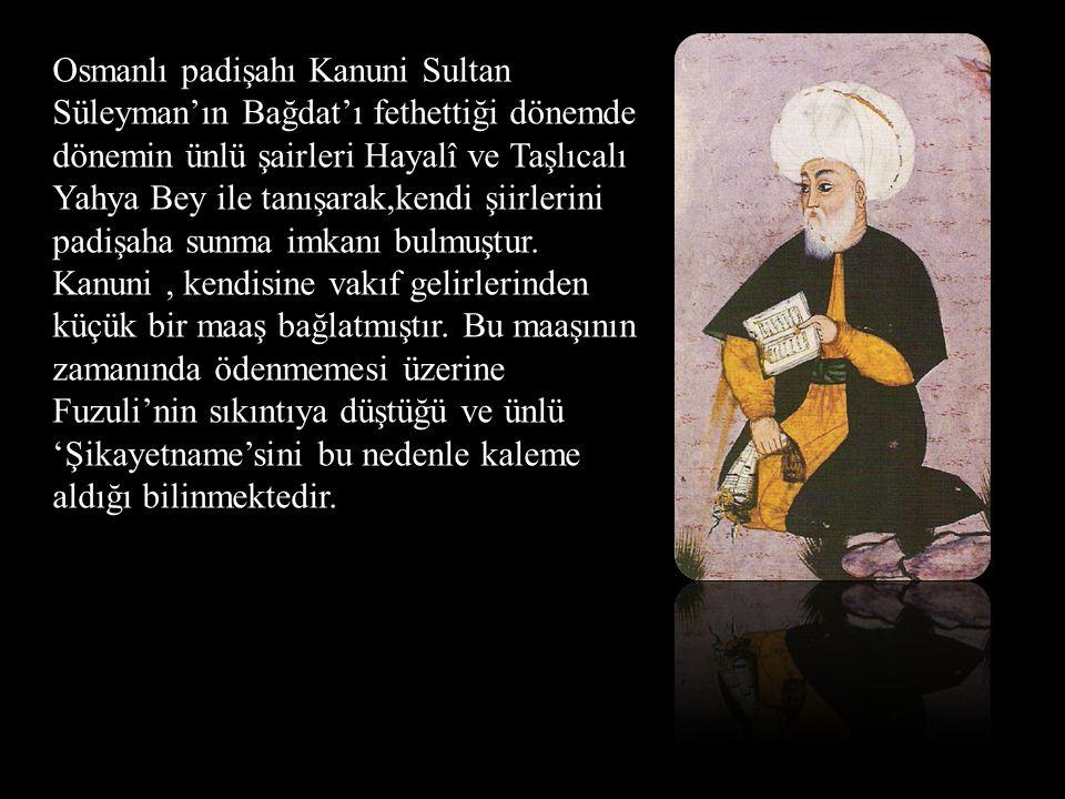 Osmanlı padişahı Kanuni Sultan Süleyman'ın Bağdat'ı fethettiği dönemde dönemin ünlü şairleri Hayalî ve Taşlıcalı Yahya Bey ile tanışarak,kendi şiirler