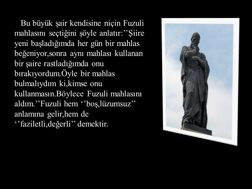 Bu büyük şair kendisine niçin Fuzuli mahlasını seçtiğini şöyle anlatır:''Şiire yeni başladığımda her gün bir mahlas beğeniyor,sonra aynı mahlası kulla