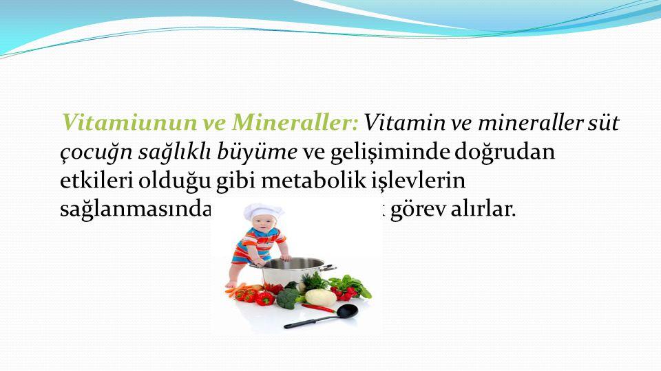 Vitamiunun ve Mineraller: Vitamin ve mineraller süt çocuğn sağlıklı büyüme ve gelişiminde doğrudan etkileri olduğu gibi metabolik işlevlerin sağlanmasında da dolaylı olarak görev alırlar.