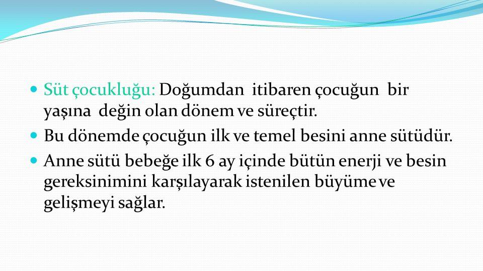 Türkiye'de Yürütülen Programlar  Anne ve Çocuk Beslenmesi Programı  Emzirmenin Desteklenmesi, Korunması ve Bebek Dostu Hastaneler  Çocukluk Çağı Hastalıklarına Bütüncül yaklaşım (IMCI)