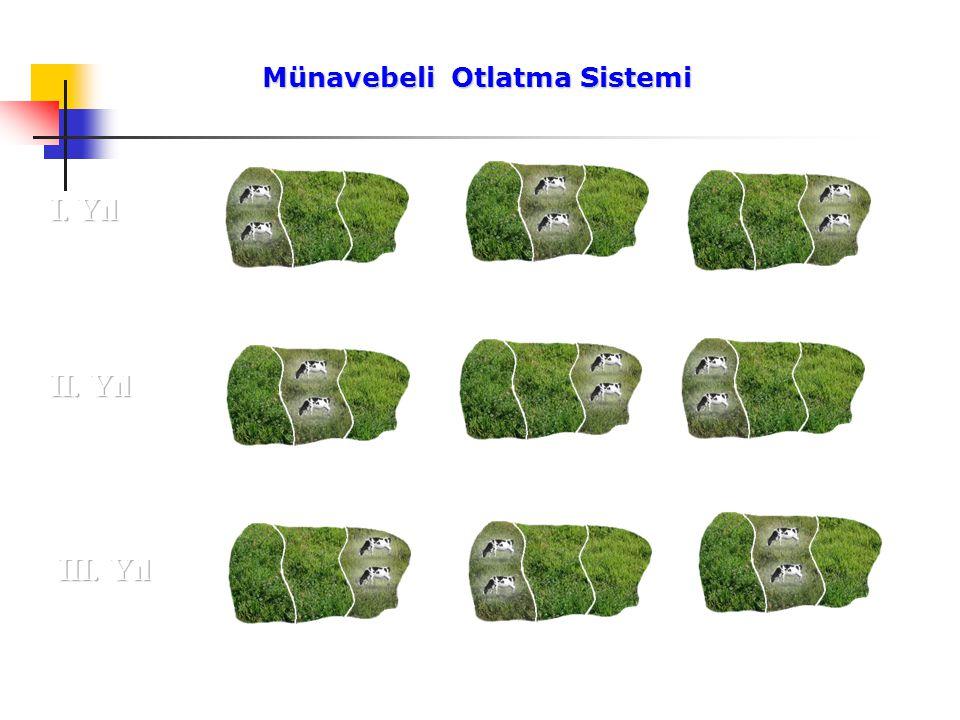 Münavebeli Otlatma Sistemi Münavebeli Otlatma Sistemi