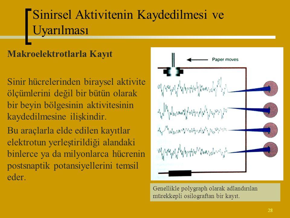 28 Sinirsel Aktivitenin Kaydedilmesi ve Uyarılması Makroelektrotlarla Kayıt Sinir hücrelerinden biraysel aktivite ölçümlerini değil bir bütün olarak b