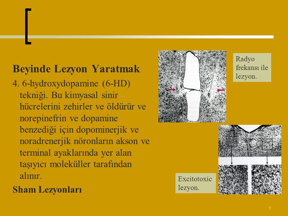 7 Beyinde Lezyon Yaratmak 4. 6-hydroxydopamine (6-HD) tekniği. Bu kimyasal sinir hücrelerini zehirler ve öldürür ve norepinefrin ve dopamine benzediği