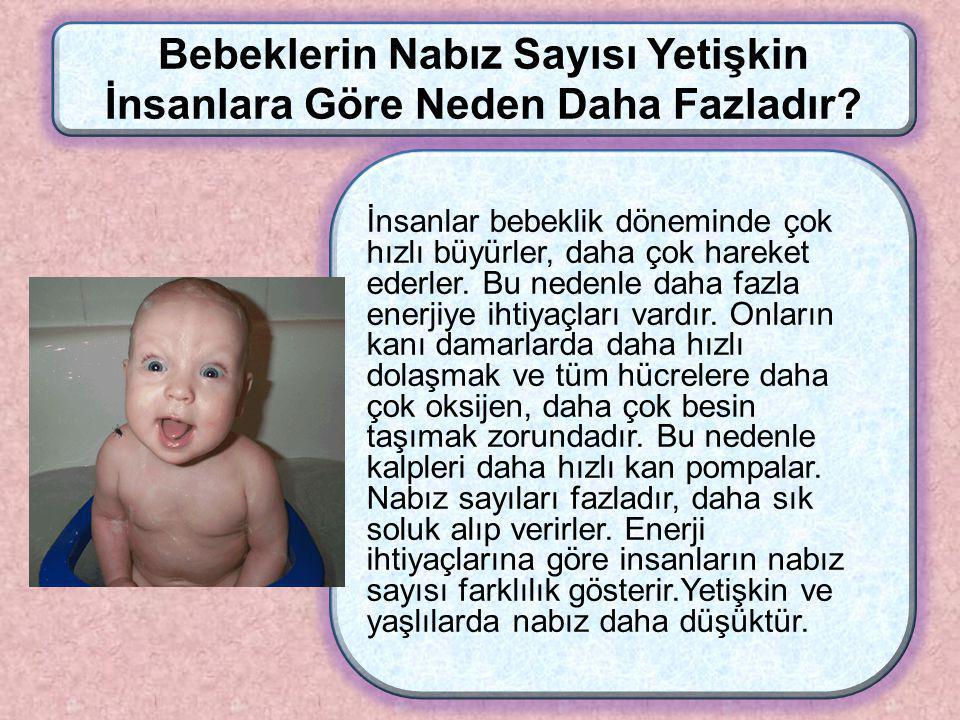 1 dk daki nabız sayısı Bebeklerde Çocuklarda Yetişkinlerde 100-120 80-100 70-80