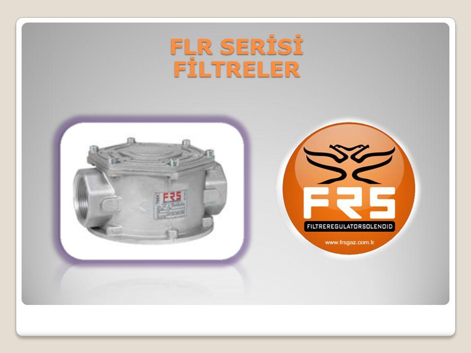 FLR SERİSİ FİLTRELER