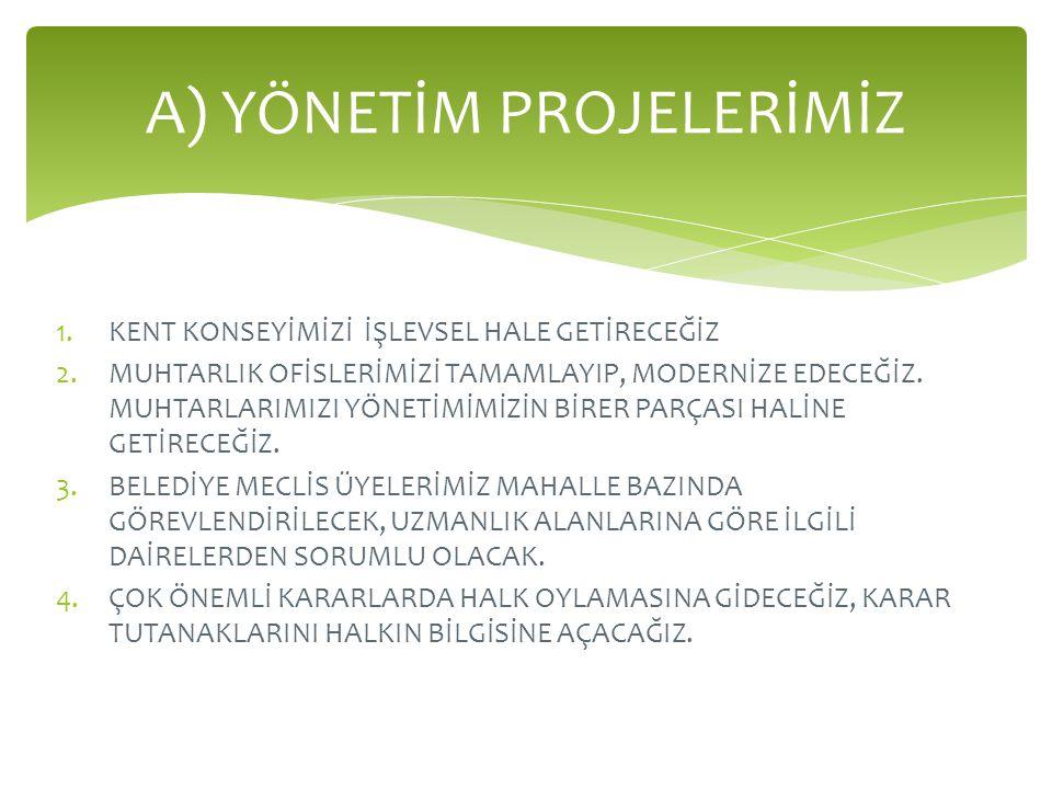 By Mert Özkul