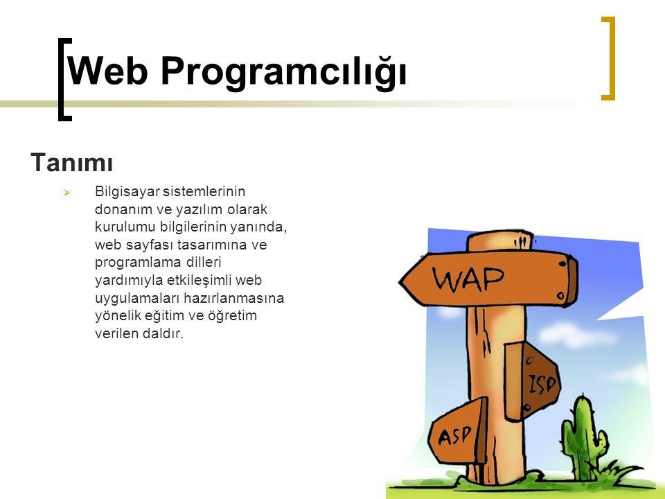 Web Programcılığı Tanımı  Bilgisayar sistemlerinin donanım ve yazılım olarak kurulumu bilgilerinin yanında, web sayfası tasarımına ve programlama dil