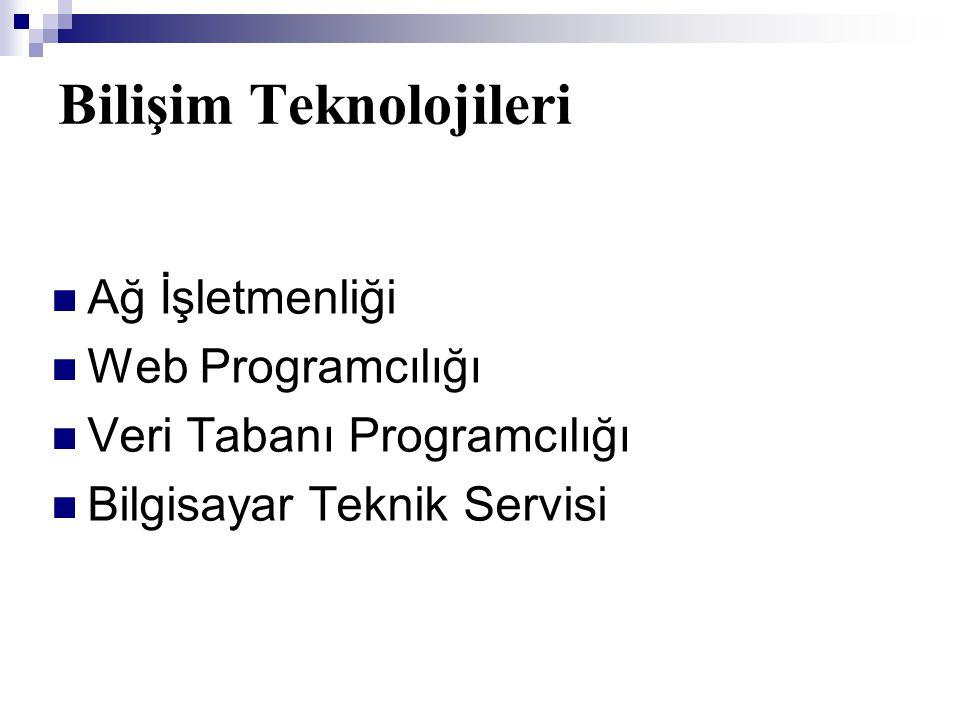 Bilişim Teknolojileri  Ağ İşletmenliği  Web Programcılığı  Veri Tabanı Programcılığı  Bilgisayar Teknik Servisi