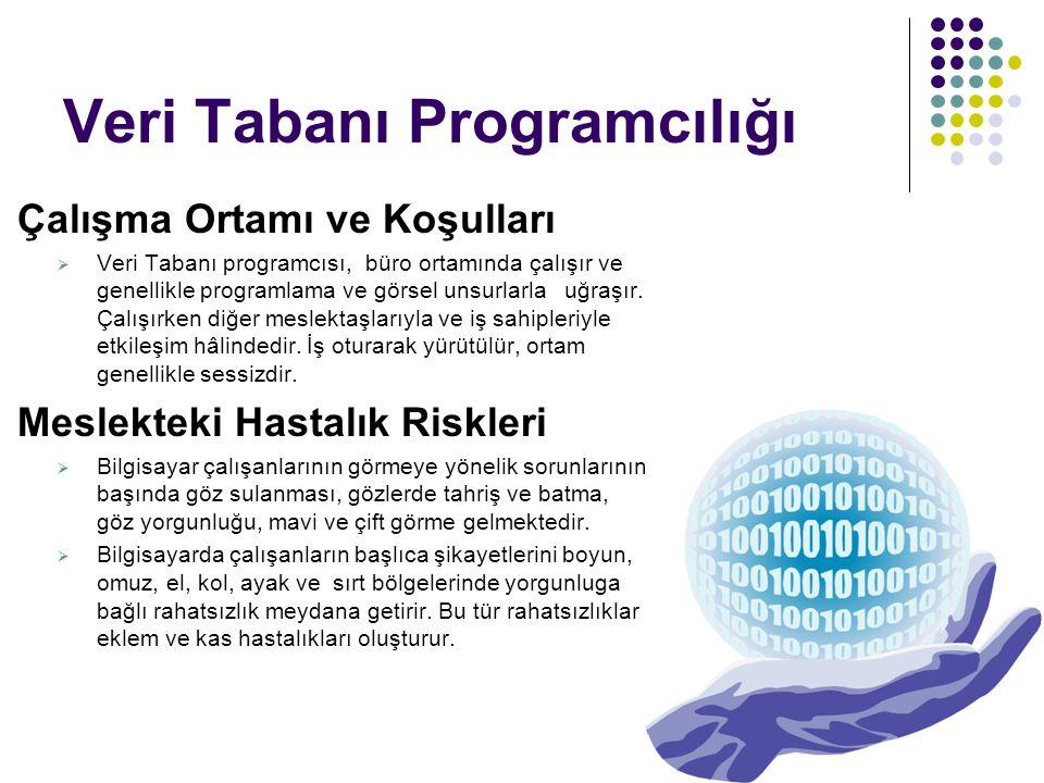 Çalışma Ortamı ve Koşulları  Veri Tabanı programcısı, büro ortamında çalışır ve genellikle programlama ve görsel unsurlarla uğraşır. Çalışırken diğer