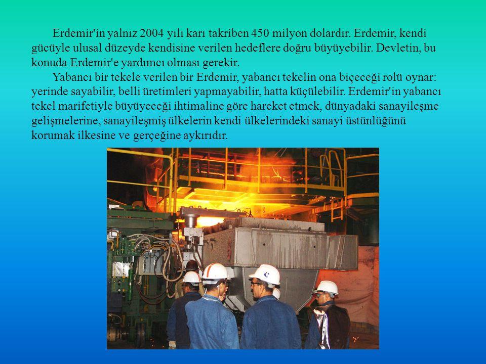 Erdemir'in yalnız 2004 yılı karı takriben 450 milyon dolardır. Erdemir, kendi gücüyle ulusal düzeyde kendisine verilen hedeflere doğru büyüyebilir. De