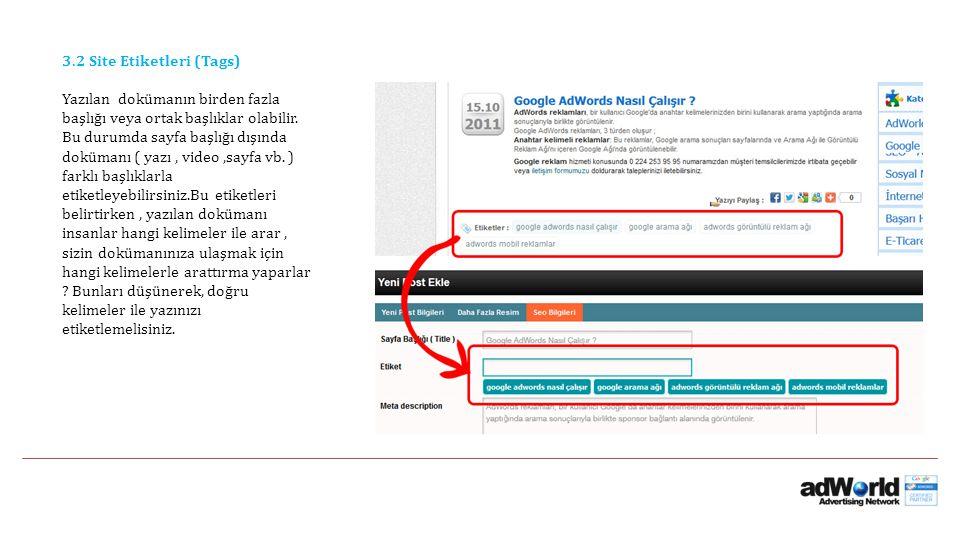 3.2 Site Etiketleri (Tags) Yazılan dokümanın birden fazla başlığı veya ortak başlıklar olabilir. Bu durumda sayfa başlığı dışında dokümanı ( yazı, vid