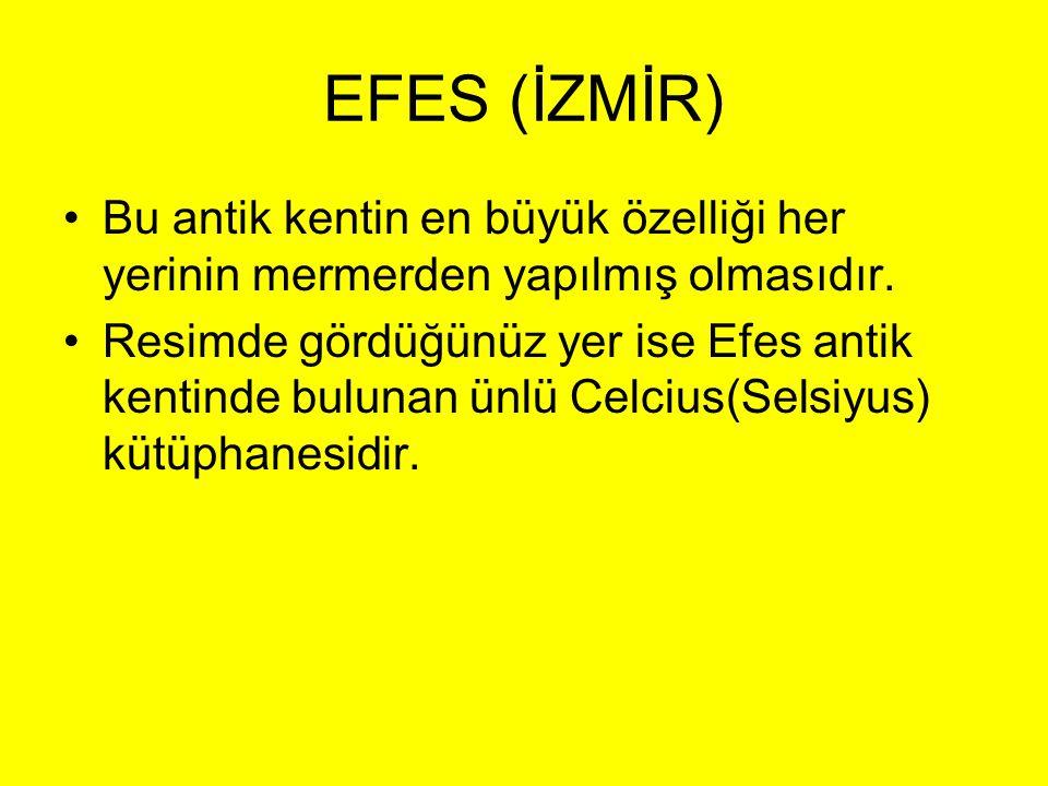 EFES (İZMİR) •Bu antik kentin en büyük özelliği her yerinin mermerden yapılmış olmasıdır. •Resimde gördüğünüz yer ise Efes antik kentinde bulunan ünlü