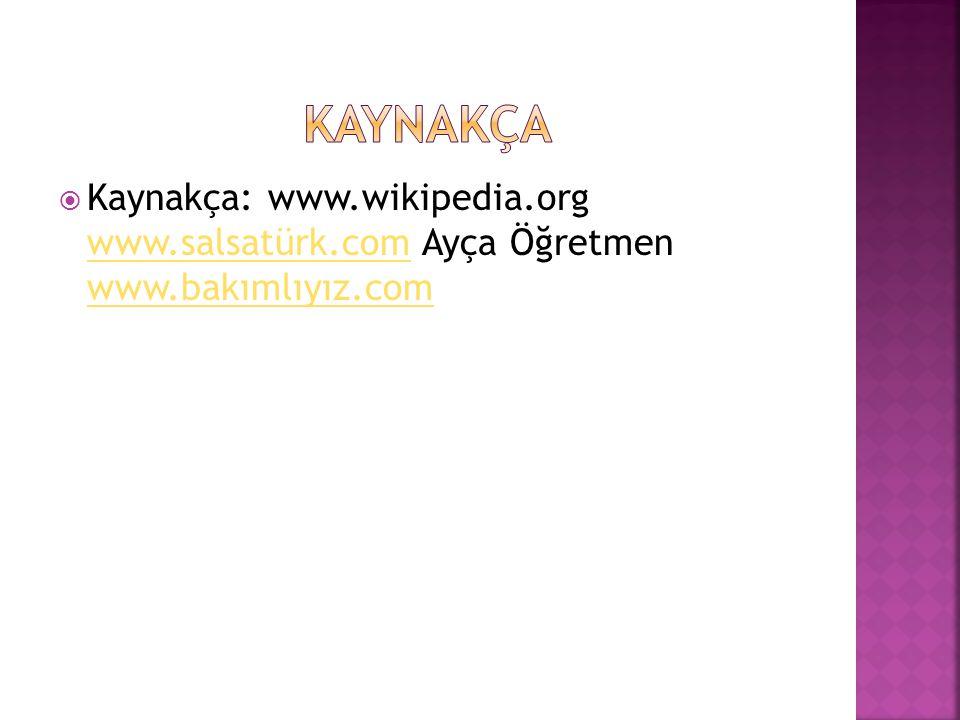  Kaynakça: www.wikipedia.org www.salsatürk.com Ayça Öğretmen www.bakımlıyız.com www.salsatürk.com www.bakımlıyız.com