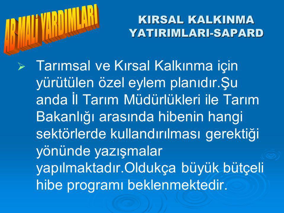 KIRSAL KALKINMA YATIRIMLARI-SAPARD   Tarımsal ve Kırsal Kalkınma için yürütülen özel eylem planıdır.Şu anda İl Tarım Müdürlükleri ile Tarım Bakanlığı arasında hibenin hangi sektörlerde kullandırılması gerektiği yönünde yazışmalar yapılmaktadır.Oldukça büyük bütçeli hibe programı beklenmektedir.
