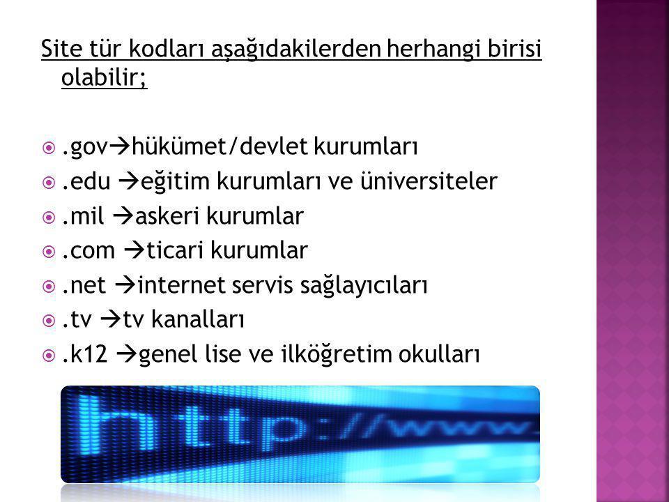 Site tür kodları aşağıdakilerden herhangi birisi olabilir; .gov  hükümet/devlet kurumları .edu  eğitim kurumları ve üniversiteler .mil  askeri k