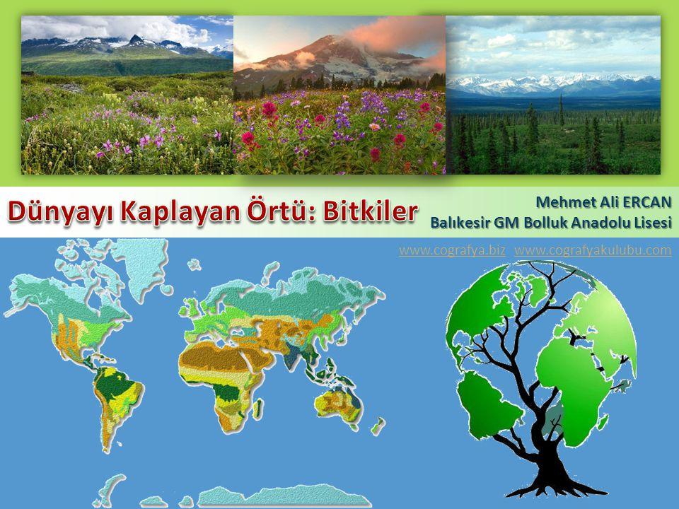 Mehmet Ali ERCAN Balıkesir GM Bolluk Anadolu Lisesi www.cografya.bizwww.cografya.biz www.cografyakulubu.comwww.cografyakulubu.com